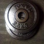 Блин 2,5 кг для штанги или гантели (d 31 мм), Екатеринбург