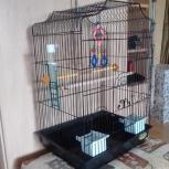 Продам клетку для крупных птичек, Екатеринбург