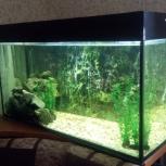 Аквариум для рыб 200 литров, Екатеринбург