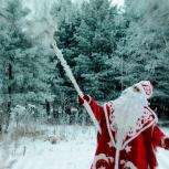 Дед мороз и Снегурочка онлайн, Екатеринбург