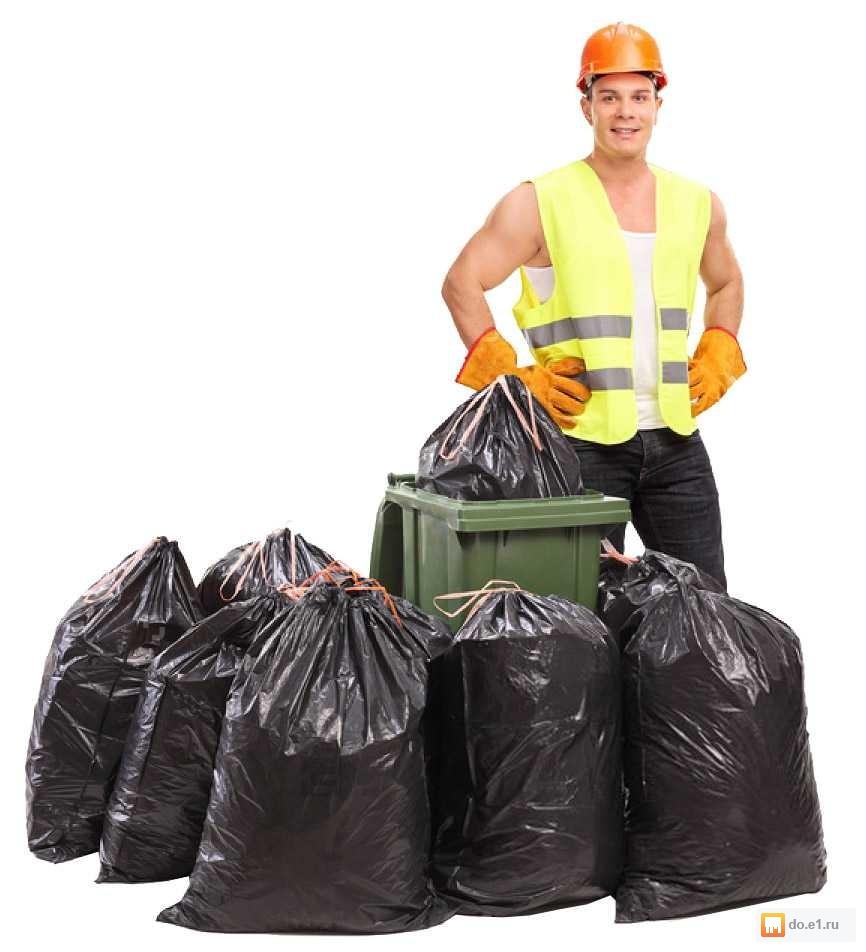 лучших вынос мусора из квартиры цена за мешок сорт моркови