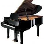 Настройка концертных роялей и пианино, Екатеринбург